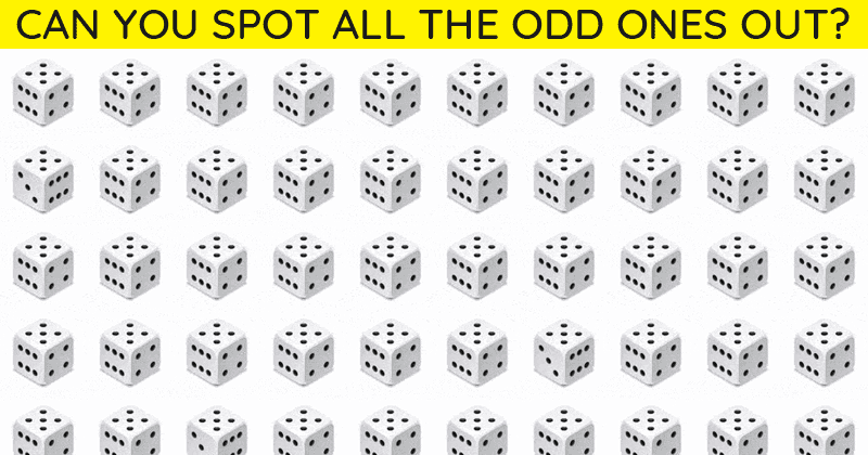 Only 5% Can Ace This Multiple Odd Ones Out Test! Find Out If Your IQ Is High Enough To Pass This Challenge
