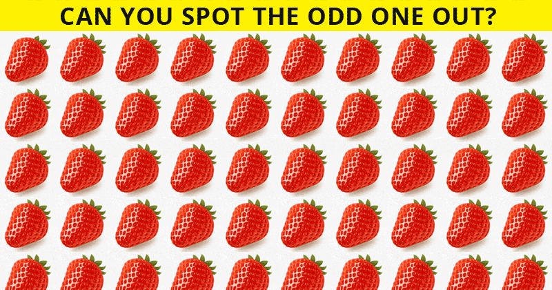 Only People With A Seriously High IQ Will Be Able To Ace This Odd One Out Visual Test! How About You?