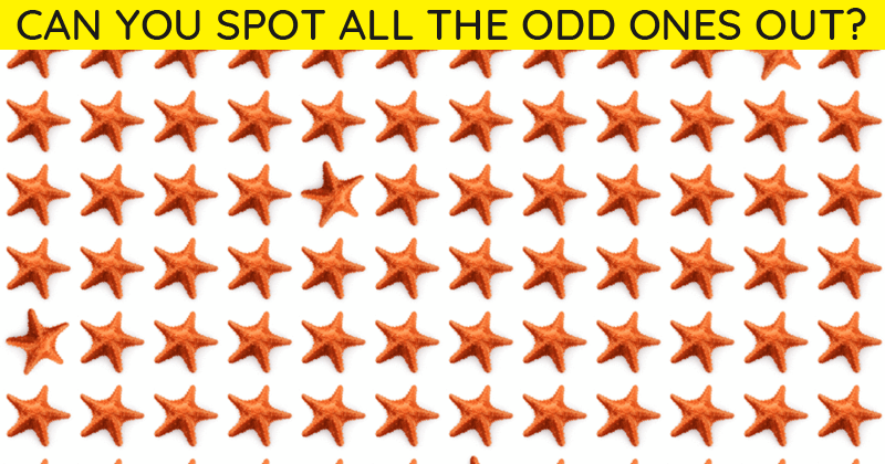 Only 1 In 30 Sharp-Eyed People Can Beat This Difficult Odd One Out Visual Game. How About You?