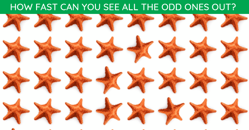 Only People With A High IQ Will Be Able To Ace This Odd One Out Visual Challenge! Can You?