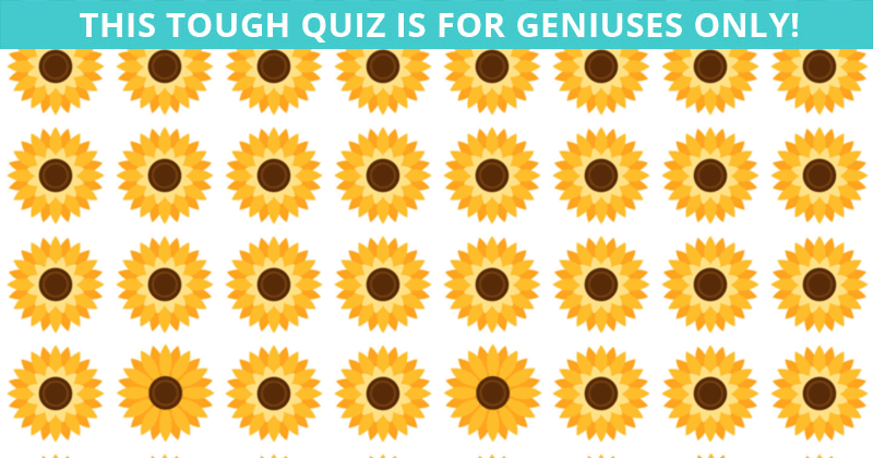 Only About 5% Can Beat This Odd One Out Quiz! Find Out If Your IQ Is High Enough To Pass This Test