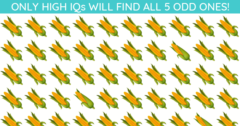 This Odd One Out Game Will Determine Your Visual Perception In About 60 Seconds