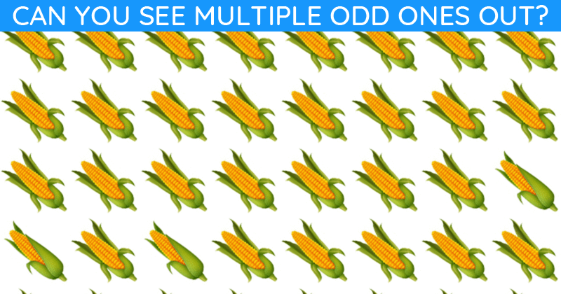 Almost No One Can Achieve 100% In This Difficult Odd One Out Visual Game. How About You?
