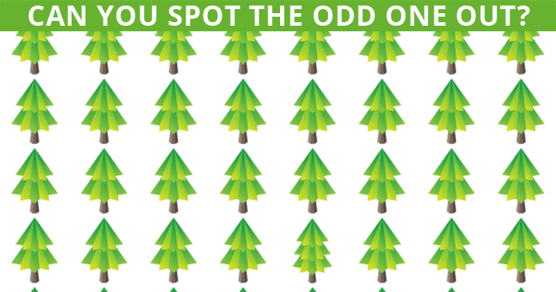This Odd One Out Puzzle Will Determine Your Visual Perception Abilities!