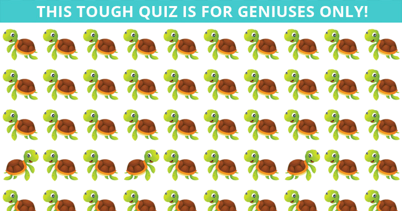 Only 1 In 30 People Can Achieve 100% In This Difficult Odd One Out Quiz. How About You?