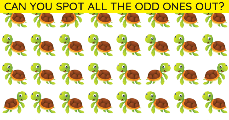 Only 1 In 30 Sharp-Eyed People Can Achieve 100% In This Odd One Out Visual Test. How About You?