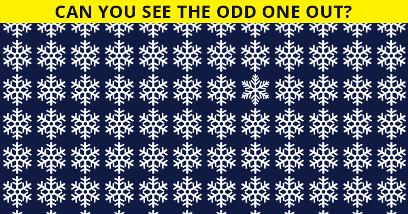 Only People With A High IQ Will Be Able To Best This Odd One Out Test! Can You?