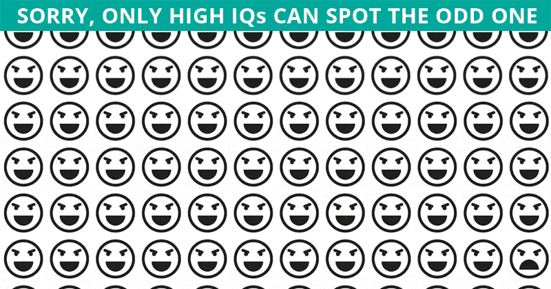 People With An Unusually High IQ Will Be Able To Ace This Odd Ones Out Visual Test! Can You?