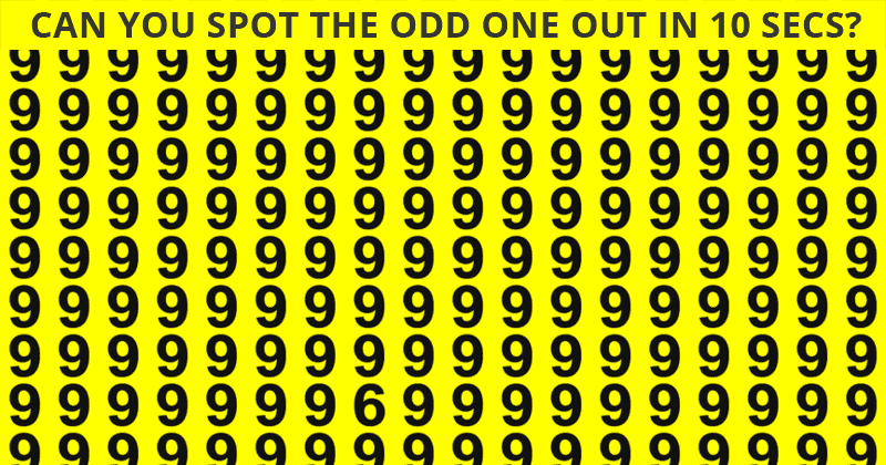 Almost No One Can Achieve 100% In This Odd One Out Visual Test. Are You Up To The Challenge?