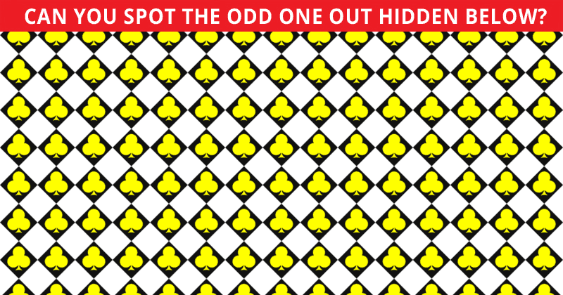 Almost No One Can Ace This Odd One Out Test. Prove Us Wrong!